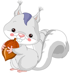 Fun zoo white squirrel vector
