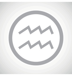 Grey aquarius sign icon vector