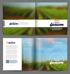 Template booklet design - wine and winemaking vector