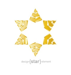 Luxury golden star with on white background vector