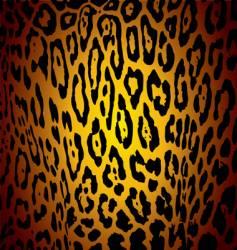 Jaguar skin vector