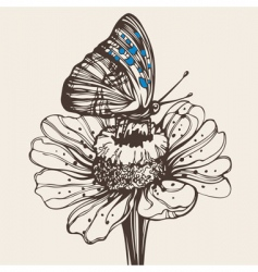 Butterfly on a flower drawing vector
