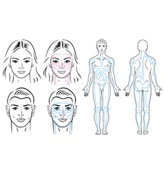 Facial and body massaging lines for man and woman vector