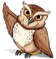 An owl vector