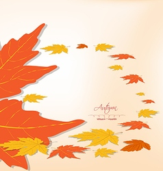 Background autumn leaves vector