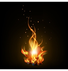 Bonfire night vector