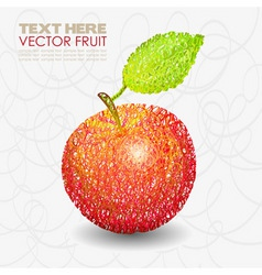 Red apple fruit designs with leaf vector