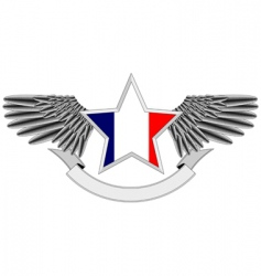 Winged star with french flag vector
