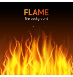 Flame dark background vector