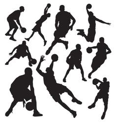Basketball vs vector