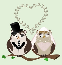 Owl bride and groom vector