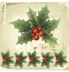 Christmas holly vector