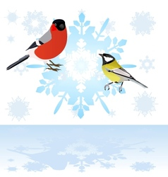 Bullfinch and tits on a snowflake vector
