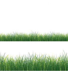 Isolated grass vector