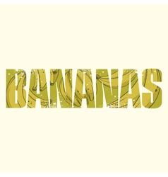 Bananas sign vector
