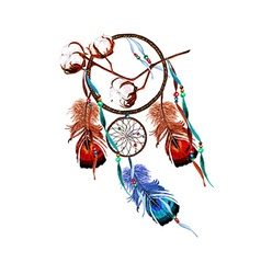 Cotton dreamcatcher vector