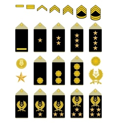 Insignia of the iranian army vector