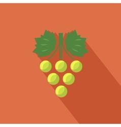 Grapes icon vector