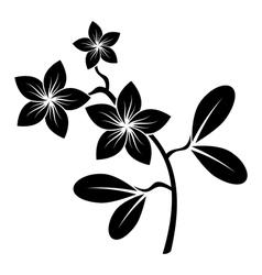 Frangipani branch silhouette vector