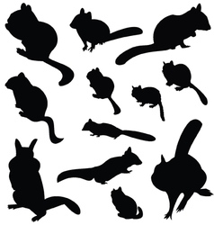 Chipmunk silhouette animal clip art vector