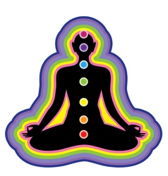 Meditation location of the chakras on the human bo vector
