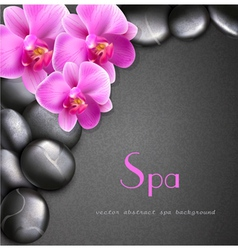 Spa background with stones and orchids vector