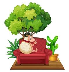 Hedgehog on sofa vector