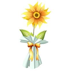 A sunflower vector