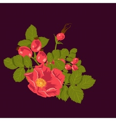 Floral background with wild rose vector