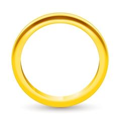 Ring vector