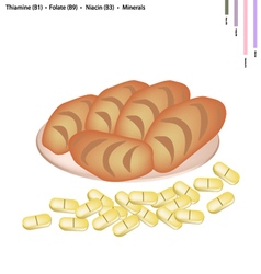 Delicious bread with vitamin b and minerals vector