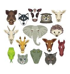 Animal heads set vector