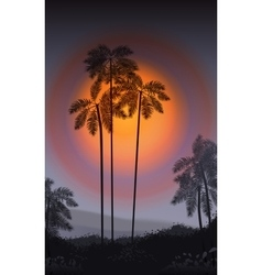 Summer night palm trees in the night vector