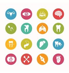 Human anatomy icons set circle series - eps10 vector