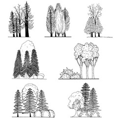 A set of tree silhouettes  for architectural or l vector