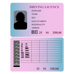 Driving license woman vector