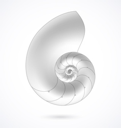 Nautilus shell vector
