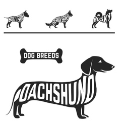 Isolated dog breed silhouettes set with names of vector