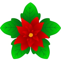 Christmas flower vector