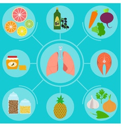 Infographics of food helpful for healthy lungs vector