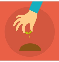Hand of a person holding seedlings vector