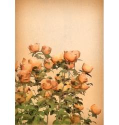 Flower watercolor roses bush vector