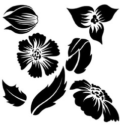 Flower elements vector