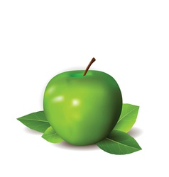 Green apple background vector