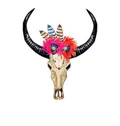 Bull skull poppies vector
