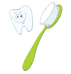 Cartoon tooth and toothbrush image vector