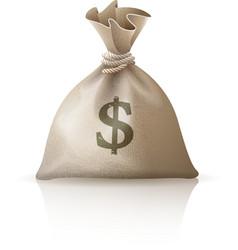 Full sack with money dollars vector