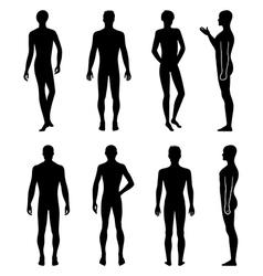 Set of full length front back silhouette of man vector