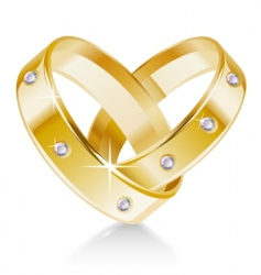 Two wedding rings shaped heart vector