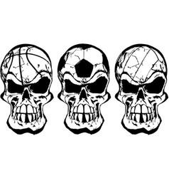 Skull ball sports vector
